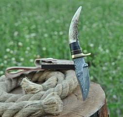 CUSTOM HAND FORGED DAMASCUS Steel Hunting Knife W/STAG Antle